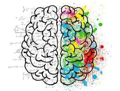 brain 2062057 640 394x300 - Có thể bạn chưa biết? Não bộ đàn ông và phụ nữ không hề giống nhau